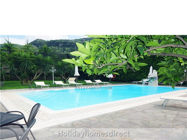 Swimming pool guest house booking rentals