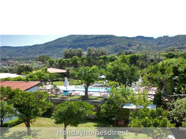 Garden/pool at complex sorrento apartments booking