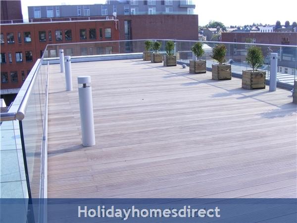 Apt 4 Pavillion View: Roof terrace