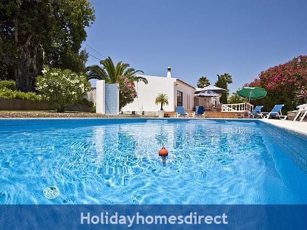 Algarve Vila Maria: Pool