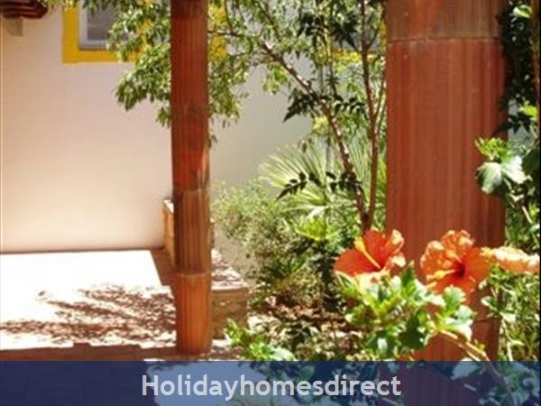 Casa Jasmina: 7. Shaded verandah with Hibiscus