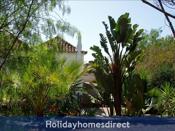 Casa Jasmina: 3. Mature garden