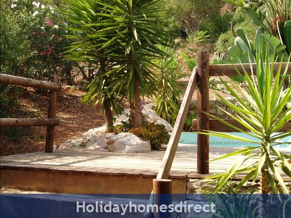 Casa Jasmina: 6. Steps to deck and tropical planting