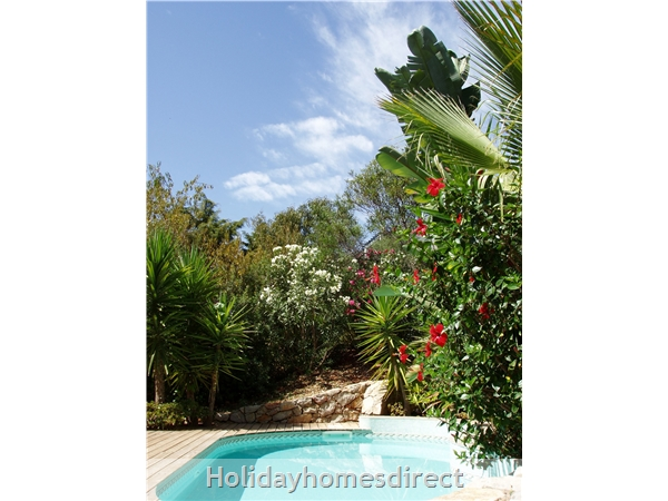 Casa Jasmina: 2. Pool and gardens