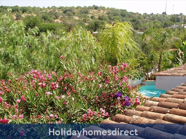 Casa Santolina: 7. View from Double bedroom, glimpse of Pool