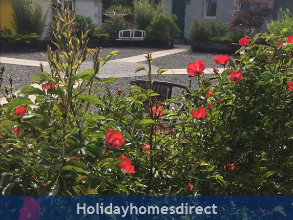 Kilcloon Self Catering Holiday Cottages: Courtyard of cottages