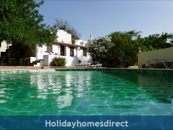 Quinta De Oxalá - Country House With Pool: The Pool-a wide shallow end for Sun Warmed water