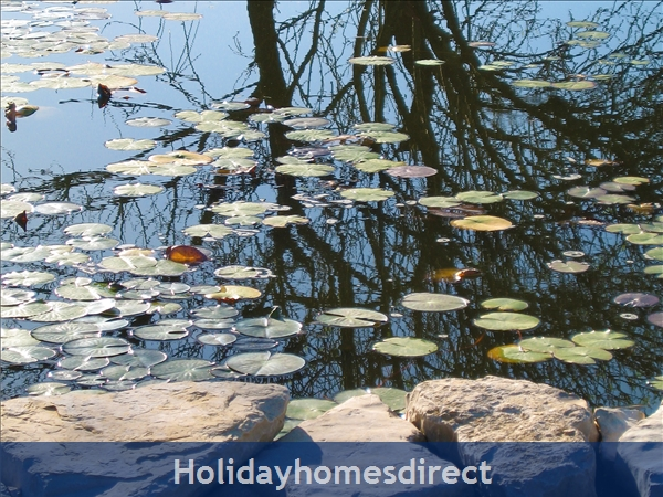 On Reflection - Come and Holiday here at Oxalá