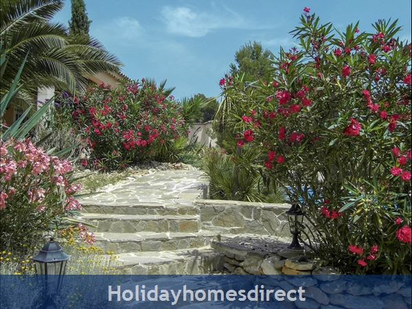 Large 6 Bedroom Villa - 14 Guests - Private Pool - 5 Minutes From The Beach: Mediterranean Vegetation
