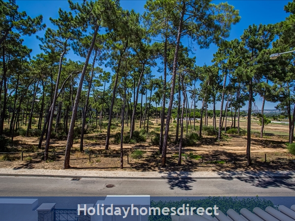 Parc Pinhal H A Superb First Floor Family 2 Bedr Apartment With Pool, Walking Distance Falesia Beach, Restaurants & Bars (77208/al): Front of Property