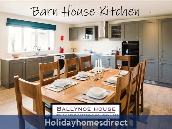 The Barn House (at Ballynoe House): Barn House Kitchen