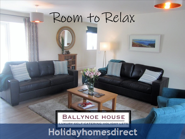 The Barn House (at Ballynoe House): Room to Relax