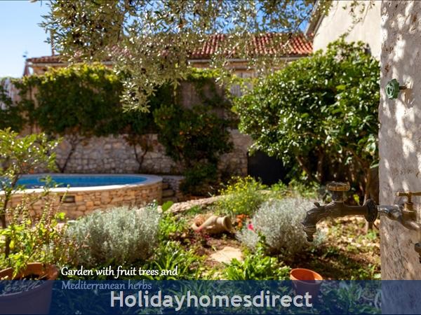 Villa Vicina, Milna, Brac Island – 3 Bedroom Villa With Pool: Image 8
